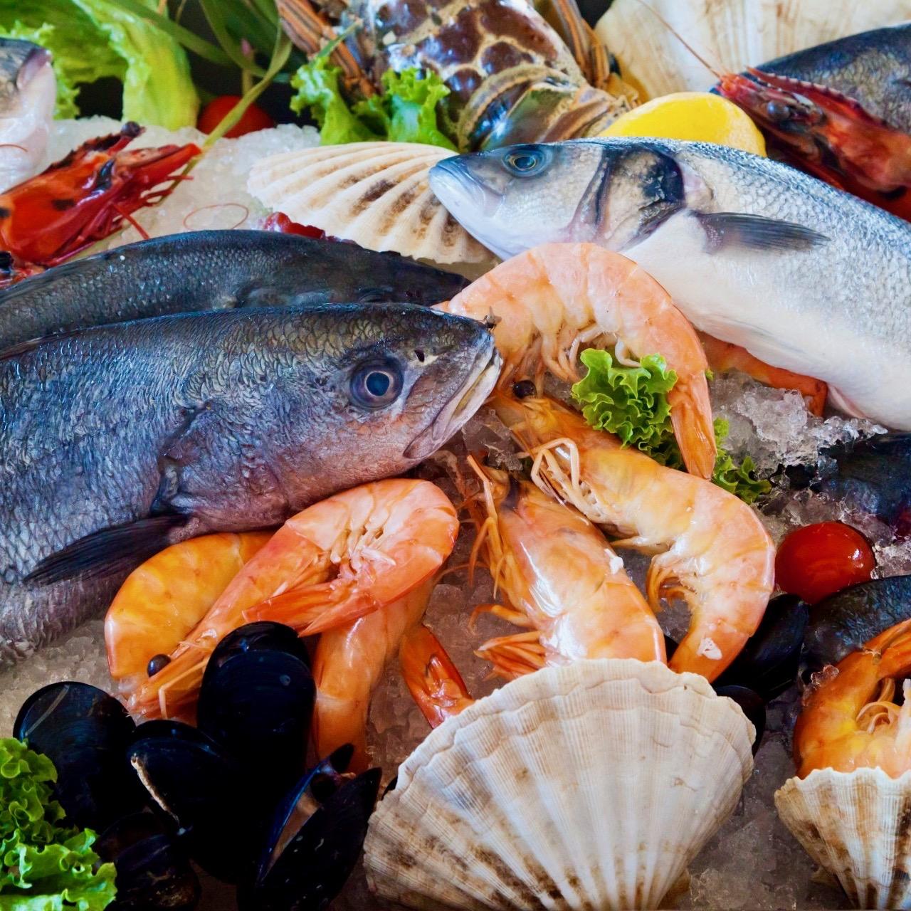 Fisch und Meeresfrüchte sind wichtige Lebensmittel für das Autoimmunprotokoll.