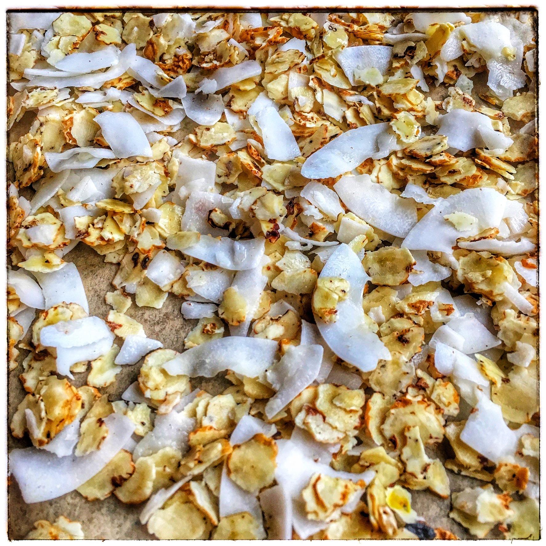 Alle Zutaten für unser AIP-Müsli werden auf einem Backblech vermengt und im Backofen geröstet.