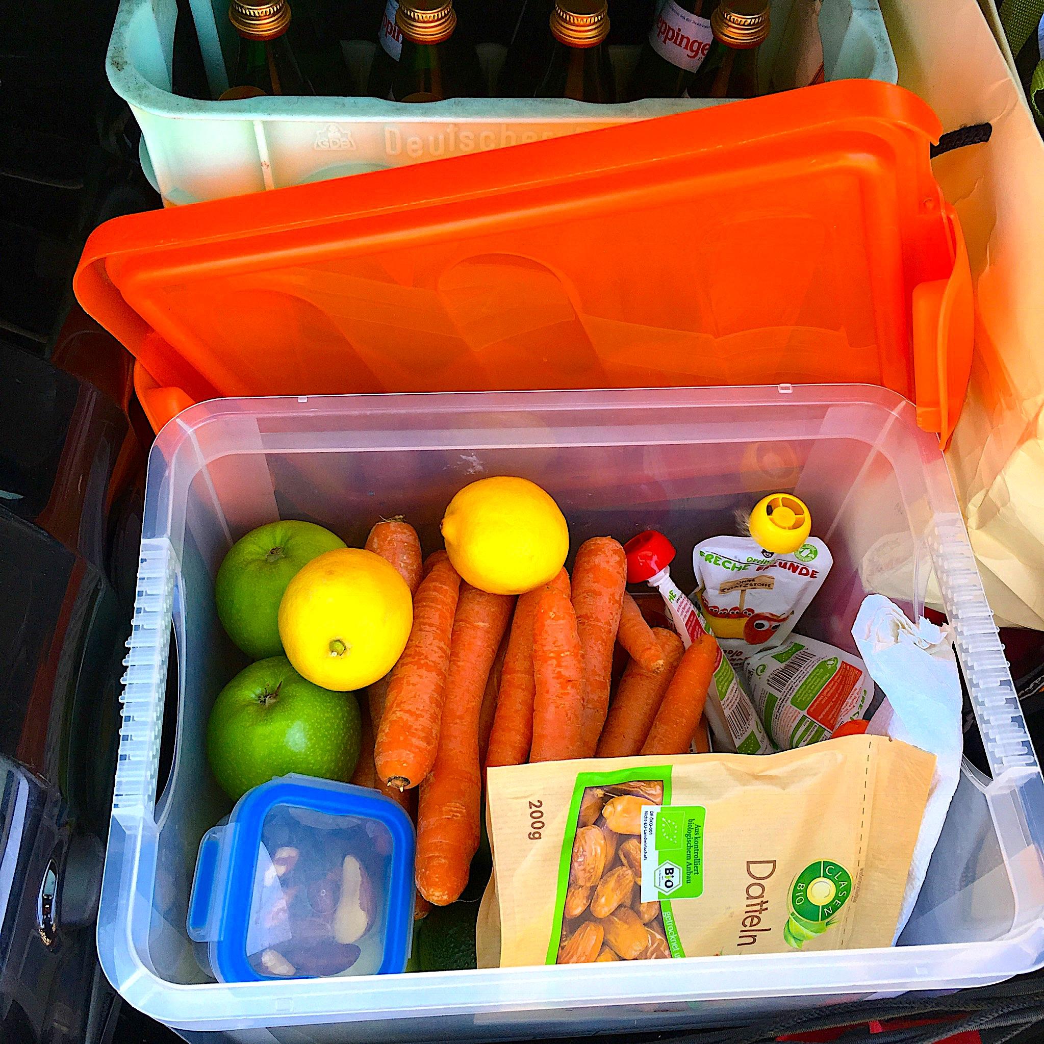 Lebensmittel-Kiste Autoimmunprotokoll (AIP) Reisen