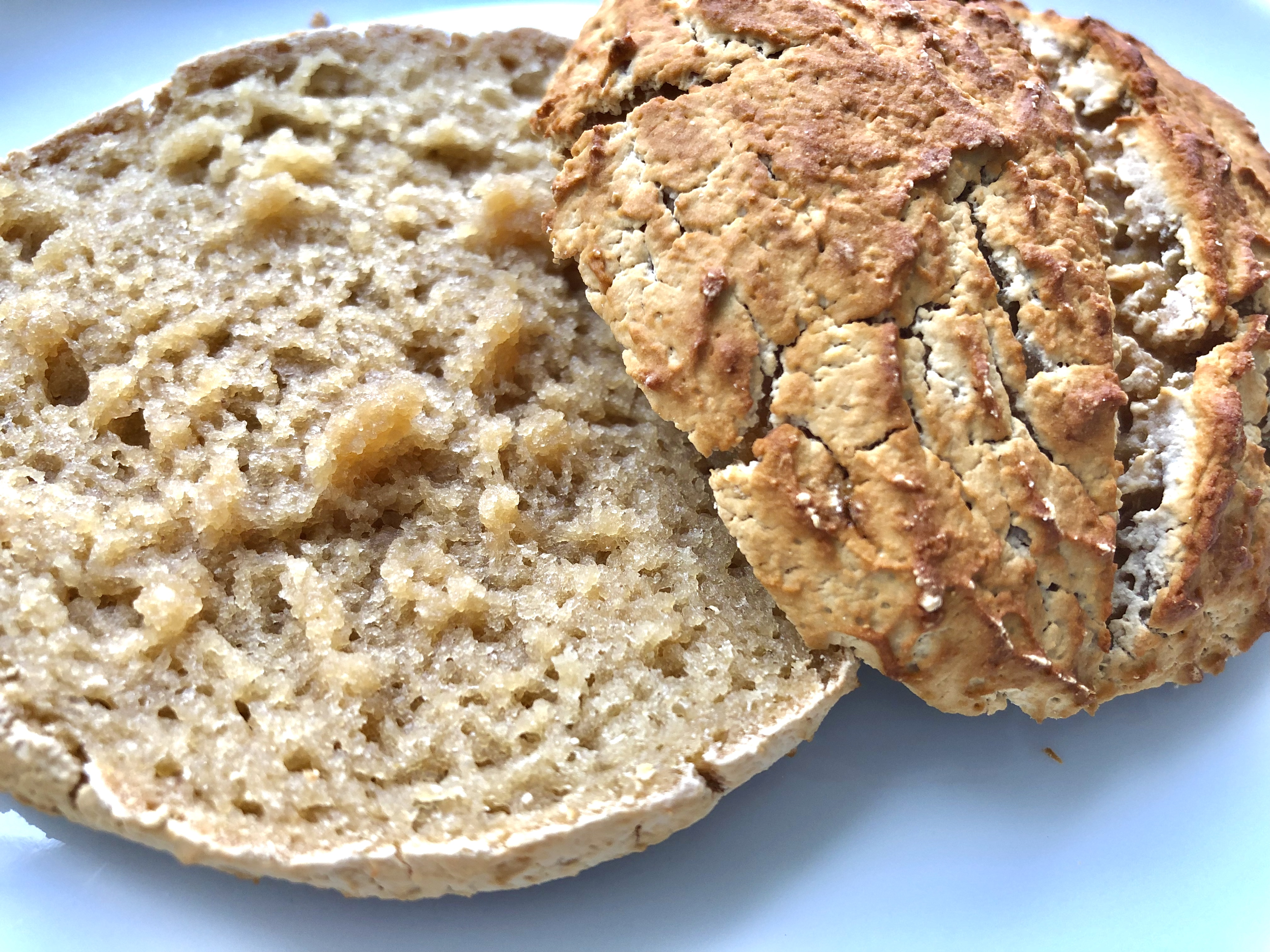 Glutenfreie Brötchen mit Maniokmehl ( AIP∗Paleo∗Glutenfrei )
