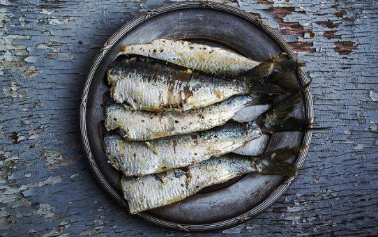 Ist ein erhöhter Fischkonsum im AIP unbedenklich?