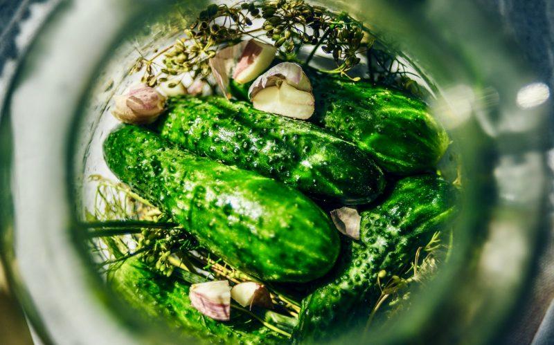 Fermentierte Nahrungsmittel wie diese Gurken im Glas unterstützen eine gesunde Darmflora.