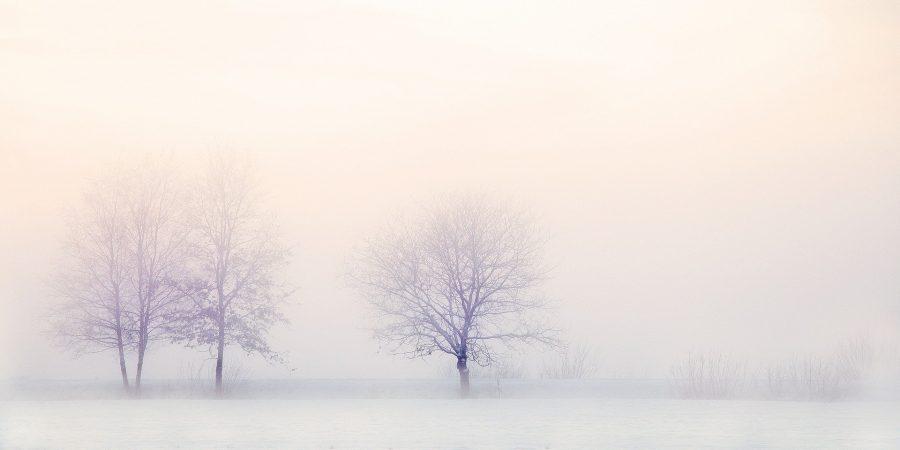 Das Paleo - Autoimmunprotokoll im Winter